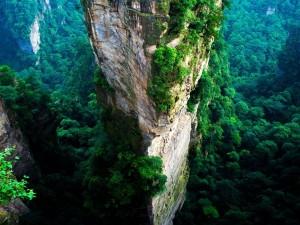 Postal: Gran pilar de arenisca en Wulingyuan (China)