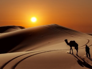 Postal: Puesta de sol en el desierto