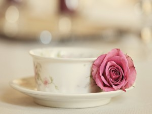 Postal: Rosa sobre el plato de una taza de té
