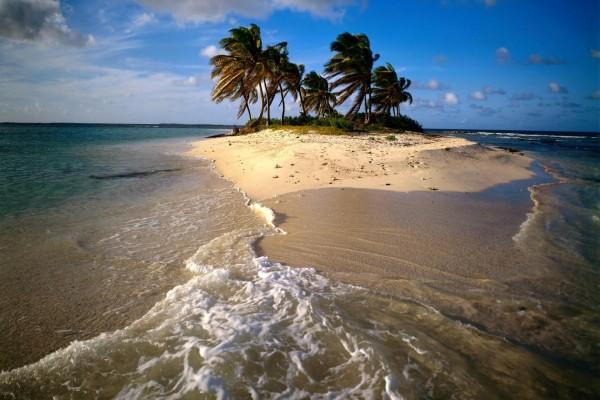 Viento en una pequeña isla con palmeras