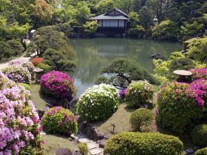 Un bonito jardín