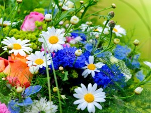 Un bello ramo de flores silvestres y rosas