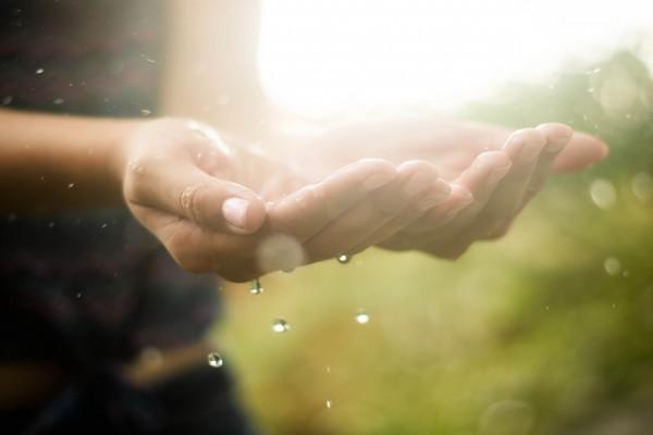 Disfrutando del agua de lluvia