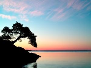 Postal: Bonito amanecer sobre el mar