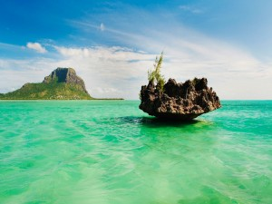 Roca sobre el mar verde