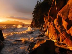 Postal: Sol brillando sobre las olas