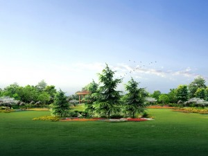 Postal: Un magnífico jardín