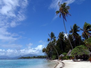 Postal: Viento azotando una playa