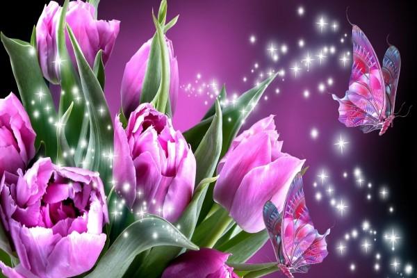 Mariposas rosadas junto a unos tulipanes
