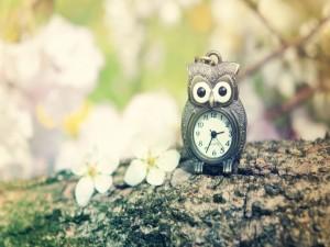 Postal: Un bonito reloj en forma de búho