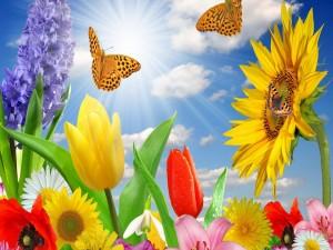Postal: Alegría primaveral en el jardín