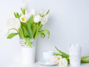 Postal: Tulipanes blancos en un recipiente