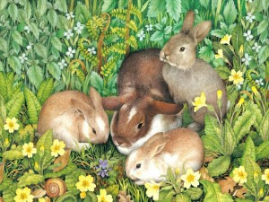 Postal: Conejos descansando sobre unas flores