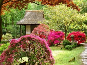 Postal: Primavera en un jardín japonés