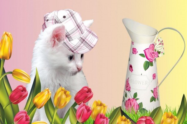 Un gatito contemplando los tulipanes
