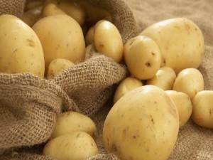 Patatas recién recogidas del campo