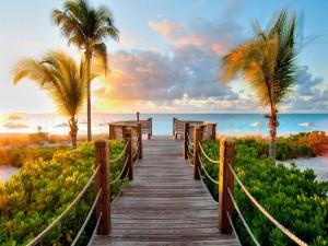 Postal: Camino de madera hacia una playa
