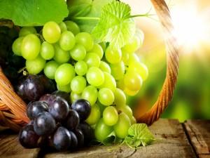 Postal: Uvas en una cesta