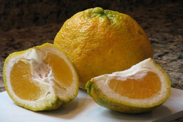Hermosos limones