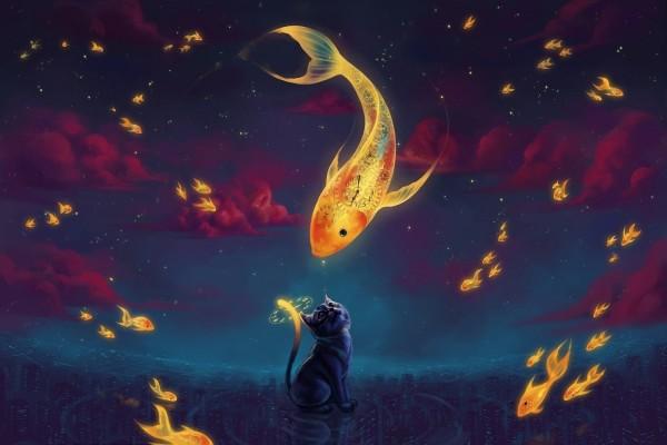 Gato junto a los peces del tiempo