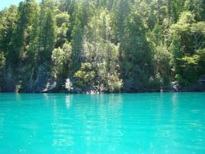 Árboles junto a un lago azul