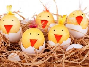 Postal: Divertidos y sonrientes huevos de pascua en un nido