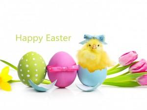 Mensaje para el Día de Pascua