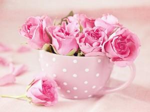 Postal: Rosas en una taza