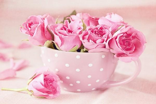 Rosas en una taza