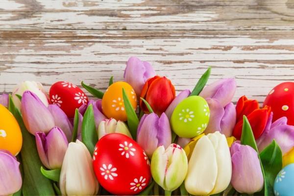 Coloridos huevos de Pascua entre tulipanes