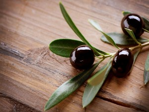 Aceitunas negras en una rama de olivo