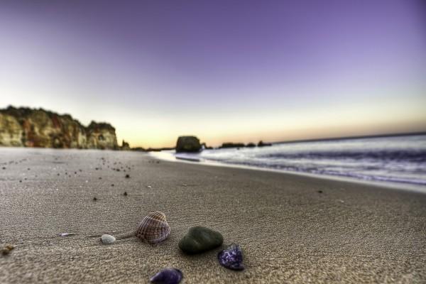 Conchas y piedras sobre la arena de una playa