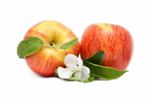 Flor blanca junto a dos manzanas