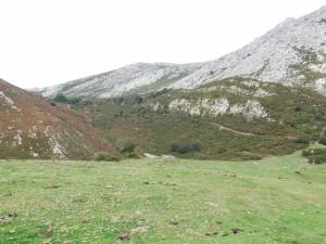 Postal: Montañas y prado verde en los Picos de Europa (Asturias)
