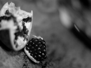 Postal: Una granada en blanco y negro