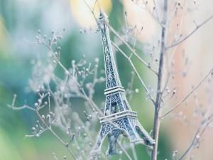 Postal: Recuerdo de París sobre las ramas de un árbol