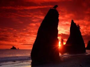 Postal: Sol brillando entre las rocas de una playa