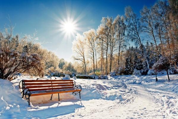 Sol brillando en un parque cubierto de nieve