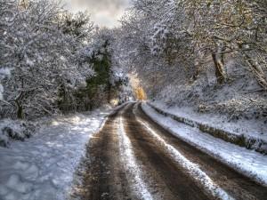 Postal: Nieve en una carretera