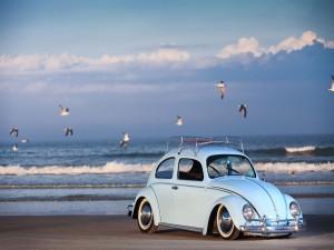Volkswagen escarabajo en una playa
