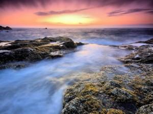 Postal: Mar en calma al amanecer