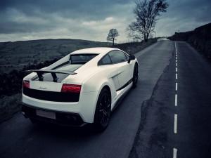 Lamborghini blanco en una carretera solitaria