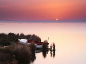 Bote junto al lago