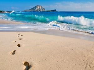 Huellas en la orilla de una playa