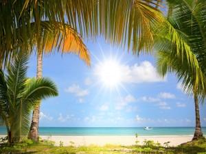 Radiante sol iluminando una playa