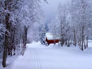 Cabaña roja cubierta de nieve