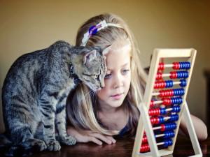 Niña y gato observando un ábaco