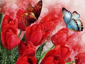 Mariposas sobre tulipanes rojos