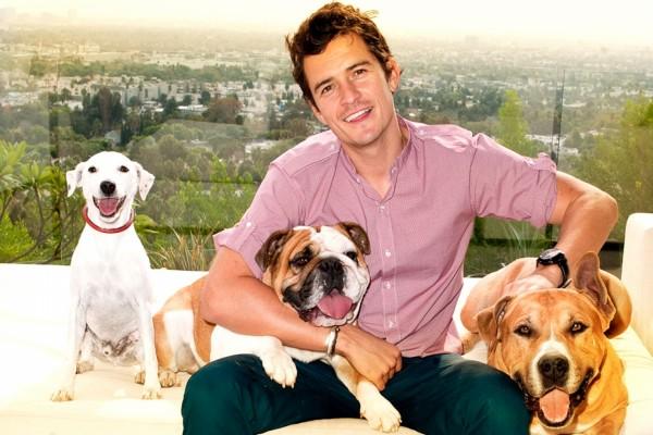 Orlando Bloom junto a tres perros