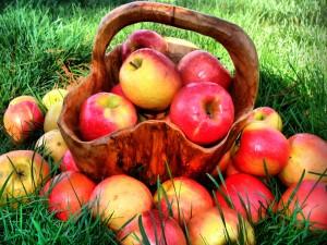 Manzanas junto a una bonita cesta de madera